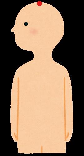 body_blank_li